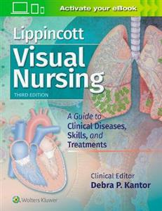 Lippincott Visual Nursing: A Guide to Clinical Diseases, Skills, and Treatments