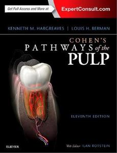 Cohen's Pathways of the Pulp