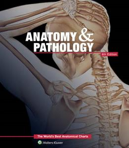 Anatomy & Pathology: The World's Best Anatomical Charts Book