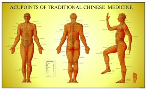 Acupoints of Traditional Chine